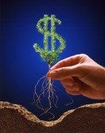 Виды бизнеса с минимальными вложениями